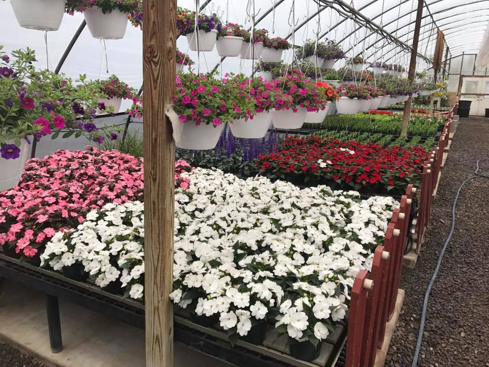 Nursery and Garden Center