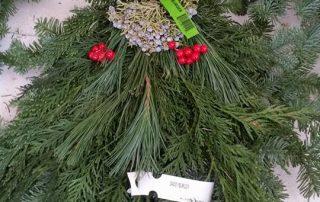 Evergreen Mistletoe