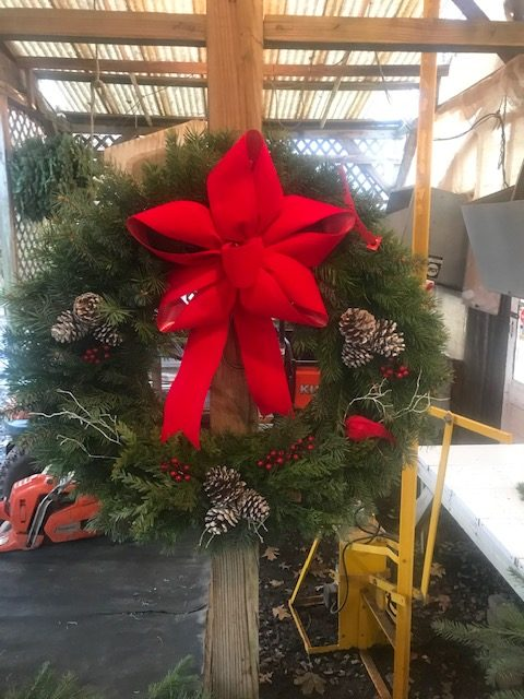 The Best Evergreens for Live Holiday Wreaths 1