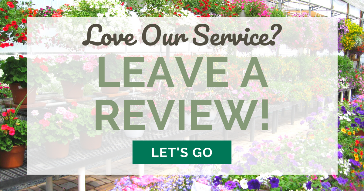 love our service? leave a review!