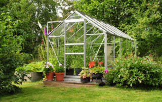 The Best Produce To Grow in a Greenhouse 1