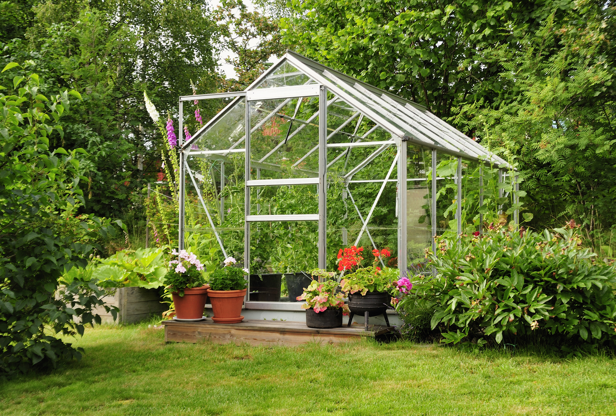 The Best Produce To Grow in a Greenhouse 3