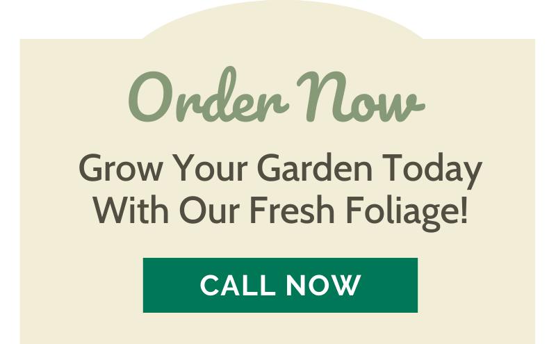 Let's Get Gardening! 🌷 3