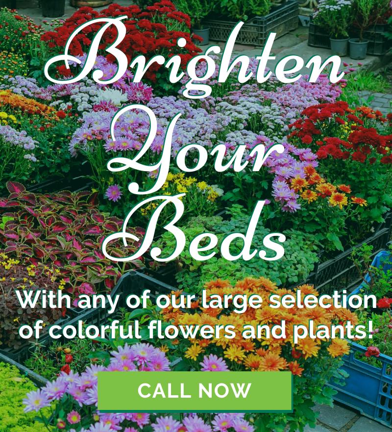 brighten your beds